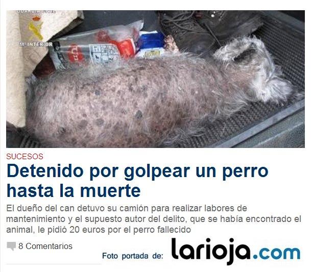 Perro golpeado hasta la muerte